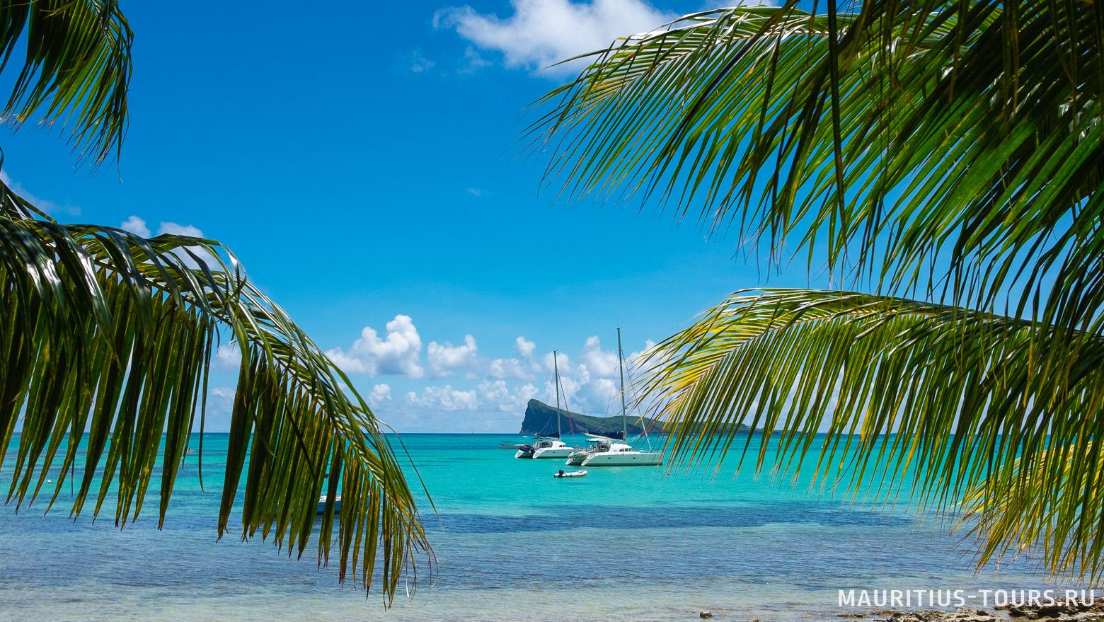 Когда лучше отдыхать на Маврикии? Сезоны и погода по месяцам