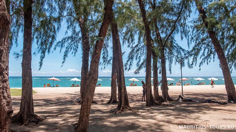 Тенистые деревья на пляже Флик-н-Флак на Маврикии