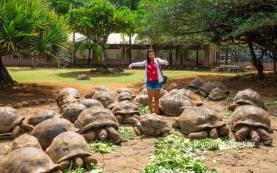 Отзыв о парке Ла Ваниль на Маврикии