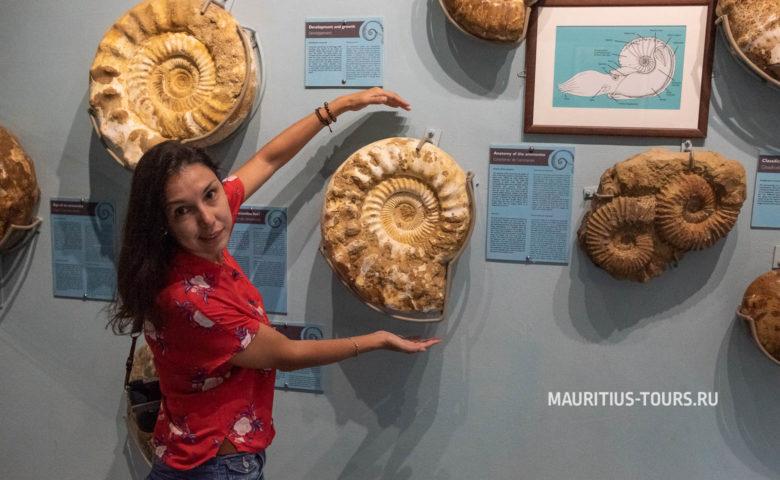 Что интересного в парке Ла Ваниль на Маврикии